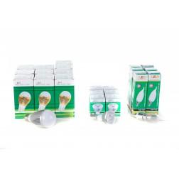 LED bespaar box 2 - assorti led lampen - 22 stuks