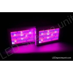 LED Spectra Unit 300 - outled