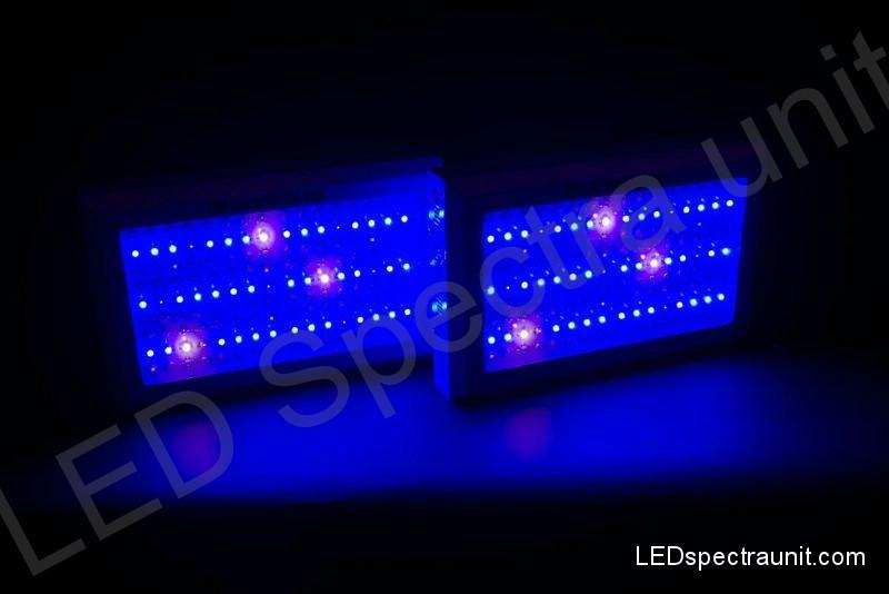 LED Spectra Unit 300 - outled